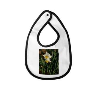 水仙 narcissus DATA_P_156 春 spring Baby bibs