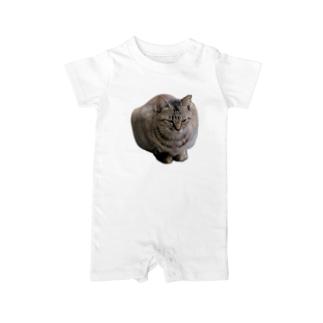 睨みを効かせた猫 ベイビーロンパース