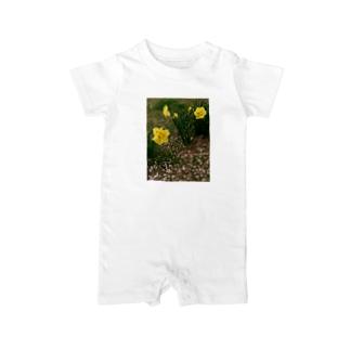 散るモノと今咲く者 DATA_P_147 水仙と桜の花びら ベイビーロンパース