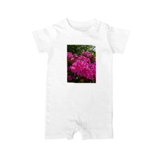 今は失われたモノ DATA_P_148 ツツジが咲く ベイビーロンパース