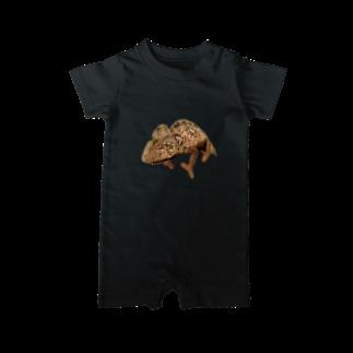 N-Reptilesのウスタレカメレオン Baby rompers