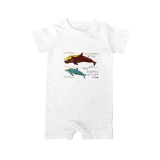 イルカとクジラの大きさ Baby rompers