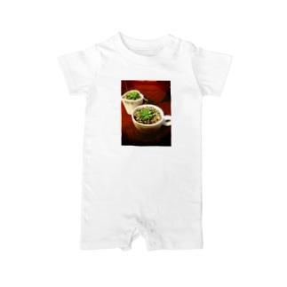 多肉植物♡マクドガリー Baby rompers