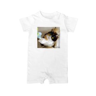 アイドル猫 ミッカ Baby rompers