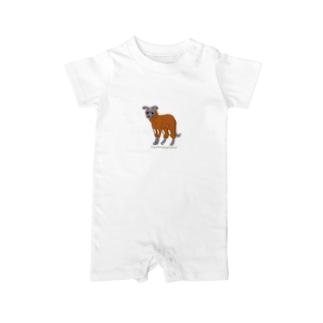 例の服のイタグレ Baby Rompers