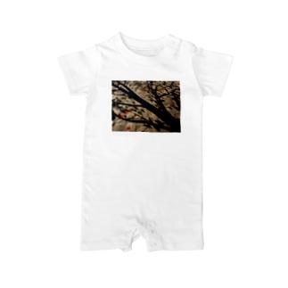 真実を写すもの DATA_P_150 樹木の影 Baby rompers