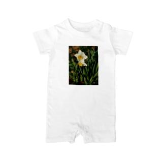 水仙 narcissus DATA_P_156 春 spring Baby rompers