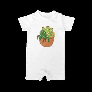 多肉植物たにくさんの多肉植物たにくさん (テラコッタのプランターに集合) Baby rompers