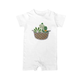 多肉植物たにくさんの多肉植物たにくさん (ワイヤーフレームに集合) Baby rompers