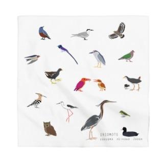 しまのなかま鳥類16(正方形展開) Bandana