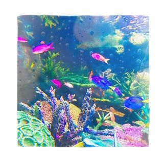 お魚いっぱいカラフル水族館 Bandana