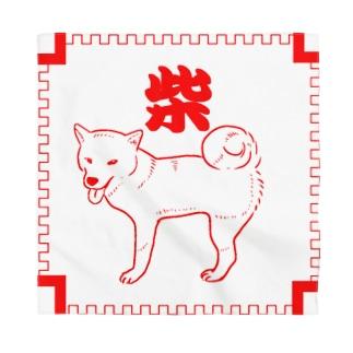 中華柴犬 Bandana