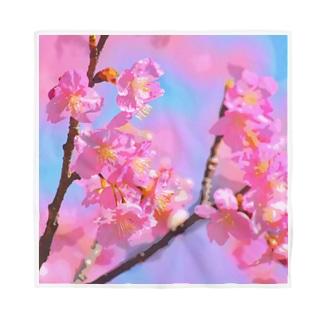 カワヅザクラの花 Bandana