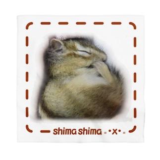 シマリスshima=・x・= 茶 Bandana