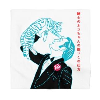 紳士のネコちゃんの抱っこの仕方 (真似しないでください) Bandana