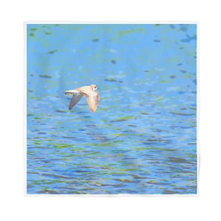 イカルチドリの飛ぶ川面 Bandana