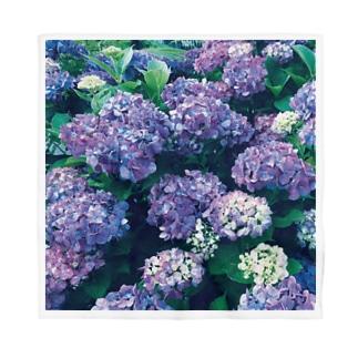 紫陽花バンダナ Bandana
