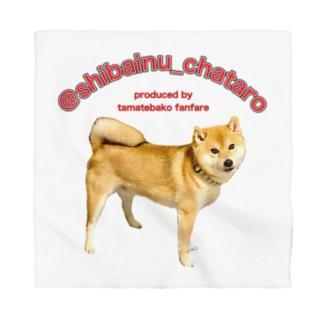柴犬チャタロウ(四つ足立ちポーズ)オリジナル Bandana