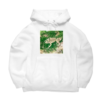 Fantastic Frog -Evergreen Version- Big Hoodies
