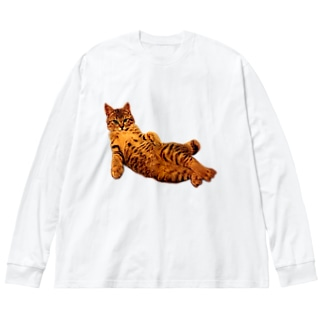 Elegant Cat 2 Big silhouette long sleeve T-shirts