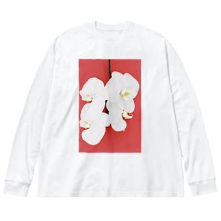 harucamera コチョウラン-4 Big silhouette long sleeve T-shirts
