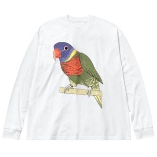 色合いが綺麗なゴシキセイガイインコちゃん【まめるりはことり】 Big silhouette long sleeve T-shirts
