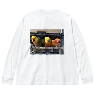 メキシコインコ Big silhouette long sleeve T-shirts