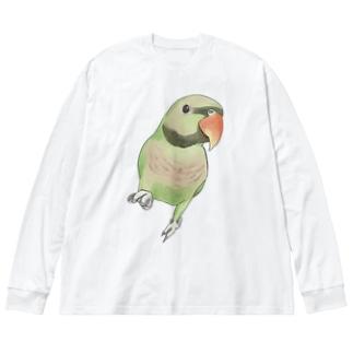 ご機嫌なダルマインコちゃん【まめるりはことり】 Big silhouette long sleeve T-shirts