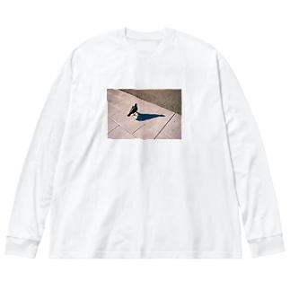 いきてるはと Big Long Sleeve T-shirt