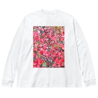 木瓜らんまん Big silhouette long sleeve T-shirts