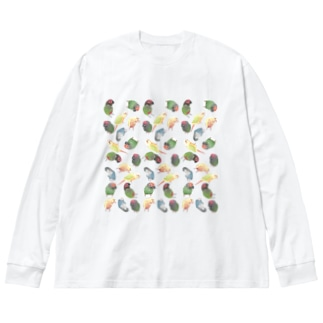 まめるりはことりのたっぷりウロコインコちゃん【まめるりはことり】 Big Long Sleeve T-shirt