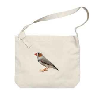 キンカチョウ Big shoulder bags