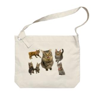 猫ッチョ【全員集合】 Big shoulder bags