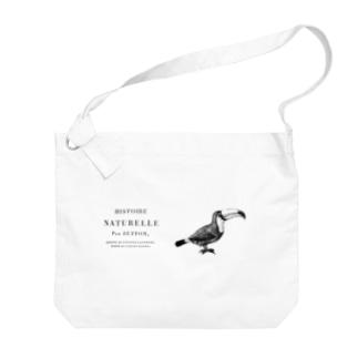 オオハシ <アンティーク・イラスト> Big shoulder bags