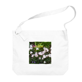 花の写真:ゼフィランサス Flower: Zephyranthes Big shoulder bags