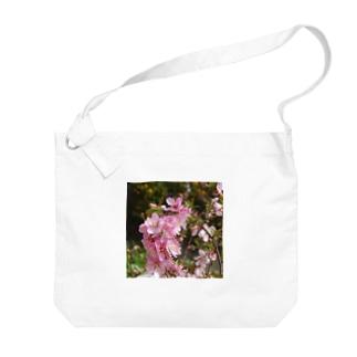 日本の花:ユスラウメ? Nanking cherry flowers (?) Big shoulder bags