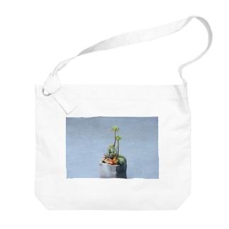 多肉植物 乙女心 オモテ Big shoulder bags