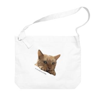 きーちゃんは言いたいことがある Big shoulder bags
