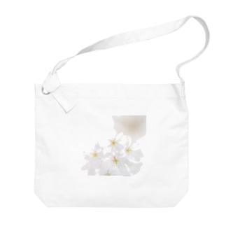 「桜」 FUJIFILM PRO400H  Big shoulder bags