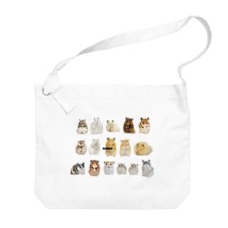【KAMAP】オールスターハムズ Big shoulder bags