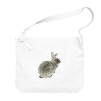 レッキスしり Big shoulder bags