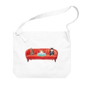 新入りと古参の緊張感溢れるソーシャルディスタンス(社会的距離)。 Big shoulder bags