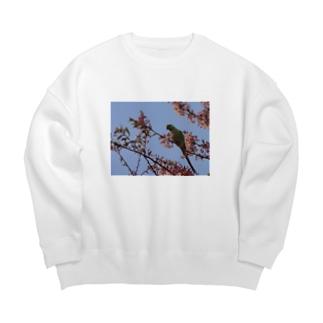 春、桜とワカケホンセイ Big silhouette sweats