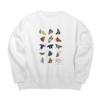蝶のおもいで Big silhouette sweats