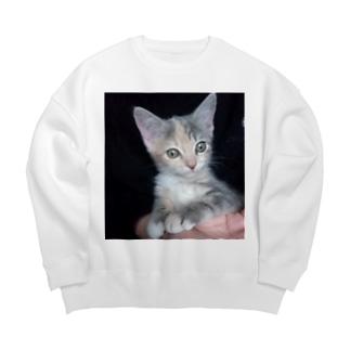 アイテム サンプル Big Crew Neck Sweatshirt