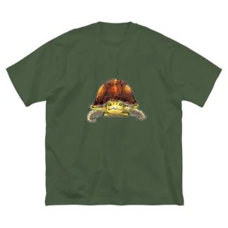 セマルハコガメ Big silhouette T-shirts