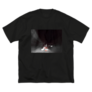 混沌コントロール屋さんのF4 Big silhouette T-shirts