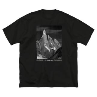 Co. Torre <Patagonia> Big silhouette T-shirts