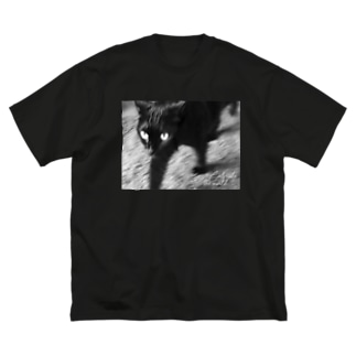 Radiostar suzuriSHOPの銀鉤舎 Cats rule the world Big silhouette T-shirts