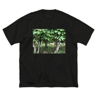 店ショップの茂みからネコ Big silhouette T-shirts
